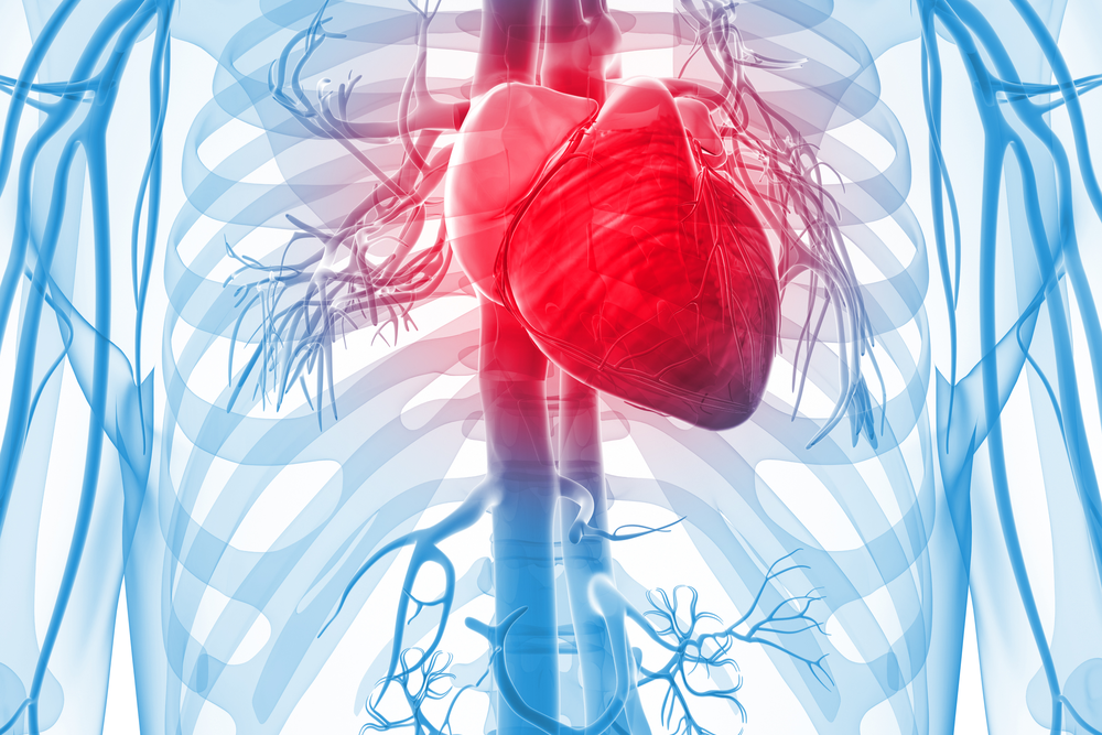 heart attack symptoms- what is a heart attack?